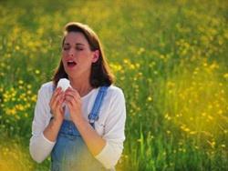 Thuốc điều trị viêm mũi dị ứng mùa xuân