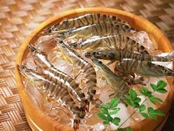 Hỏi: Thịt cá đông lạnh nên ăn vào lúc nào?